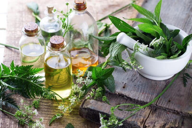 shampoing-naturel-bio