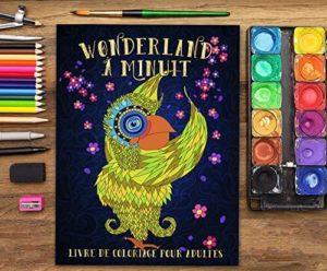 livre-coloriage-adulte-wonderland-a-minuit-papeterie-bleu